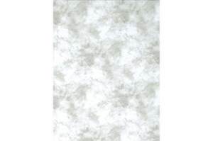 Promaster Cloud Dyed Backdrop 10'x20' Light Gray